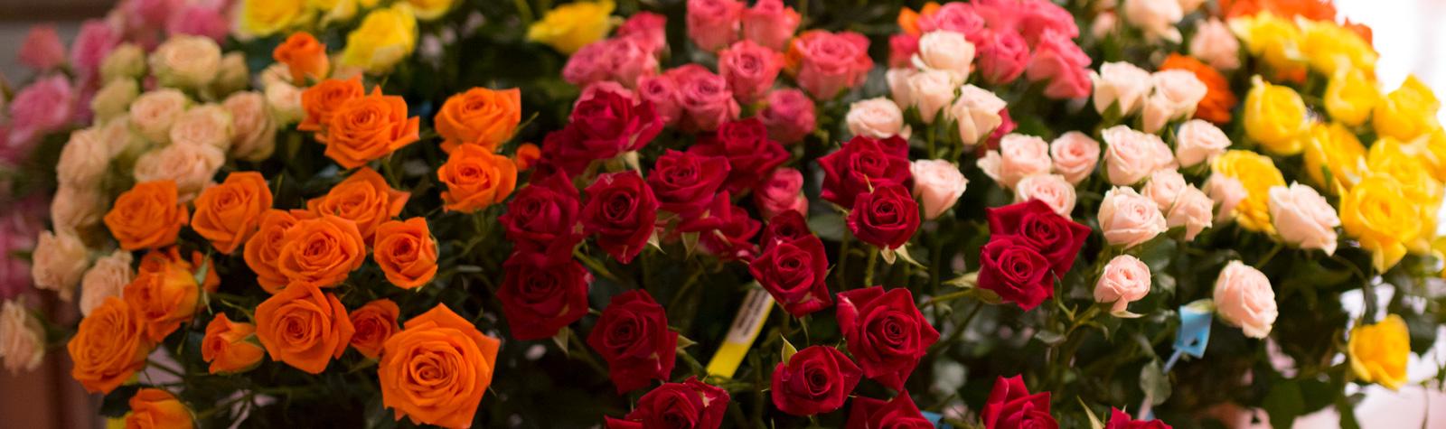 Trucos para cuidar tus ramos de rosas naturales