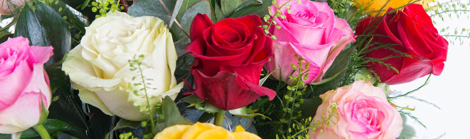 Flores en San Valentín: Ramo de rosas multicolor