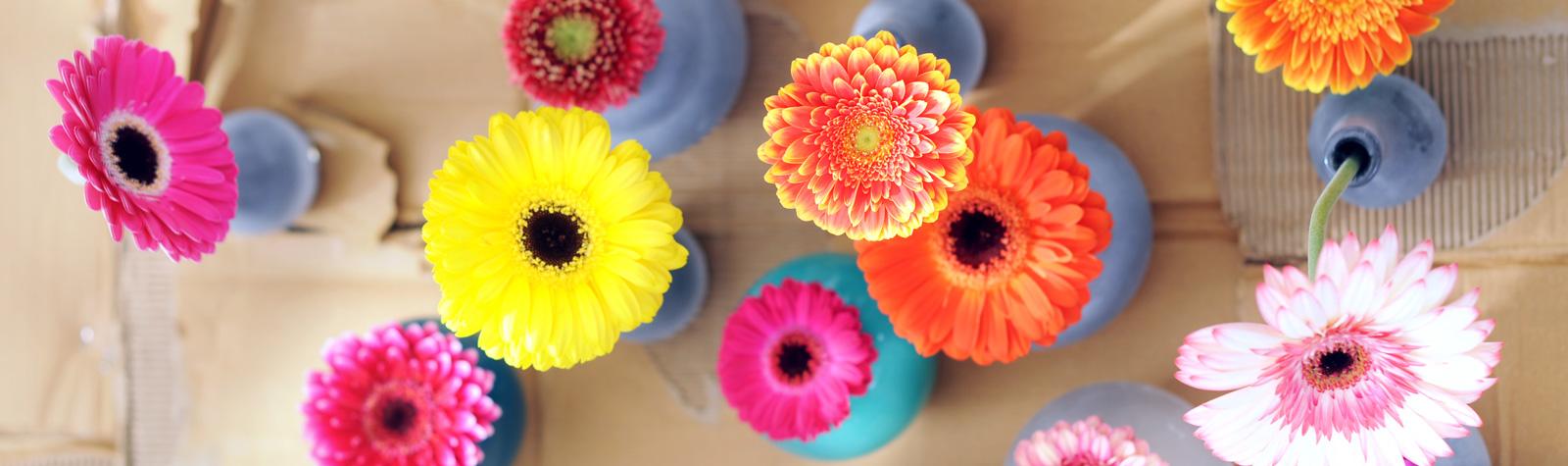 Interflora te regala 12 ramos de flores