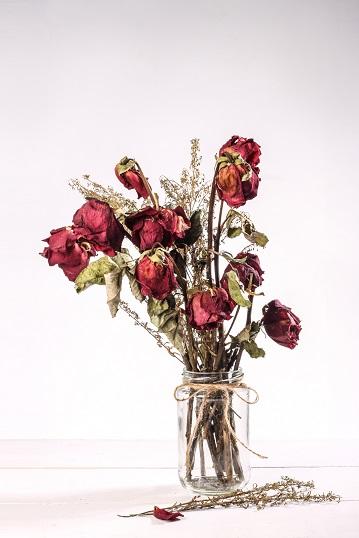 ramo de rosas rojas secas en un jarrón
