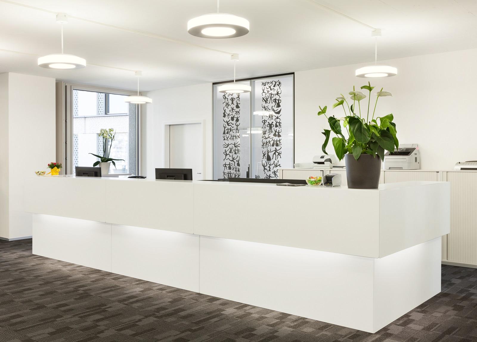 Mejores plantas de interior para la oficina y sus beneficios