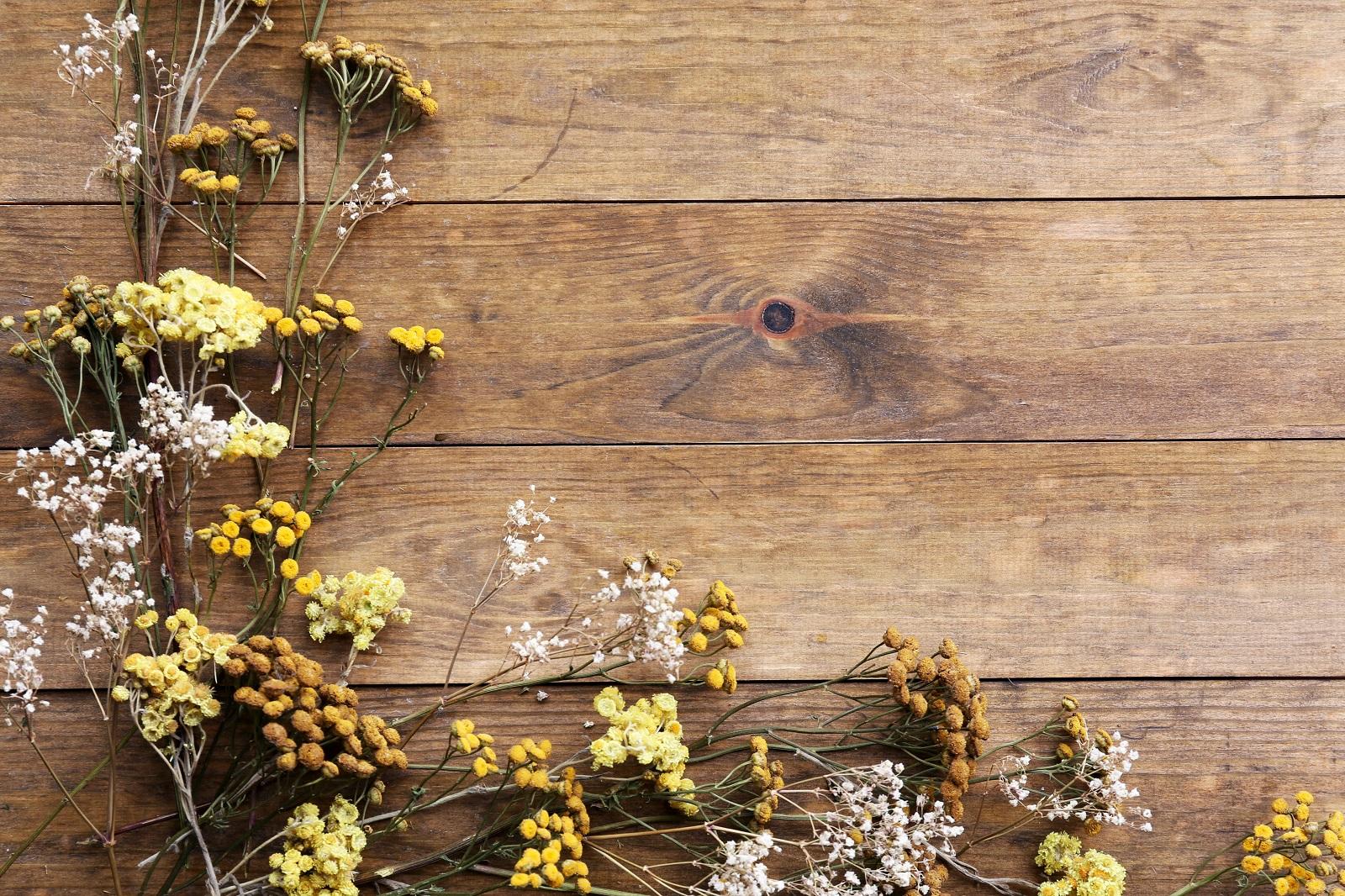 Ramos de flores naturales, cómo secarlos y conservarlos