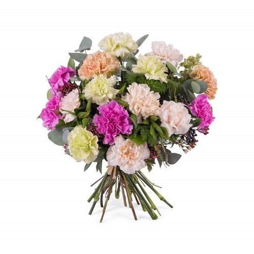 Flores de verano claveles