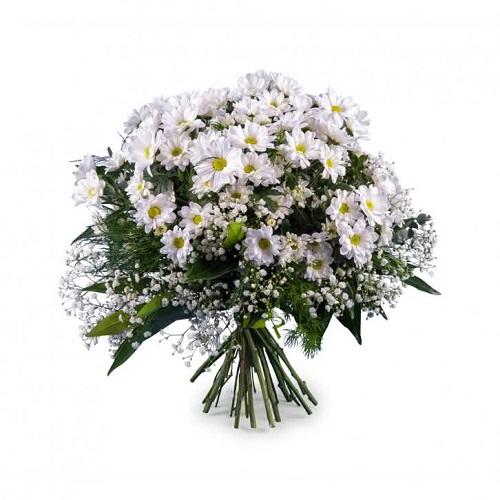 Flores de verano ramo de margaritas