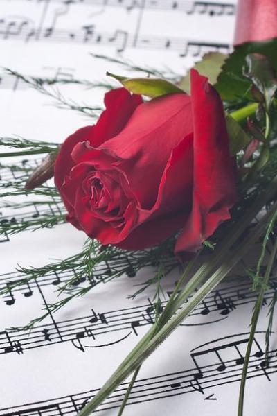 San Valentín canción Singerfy