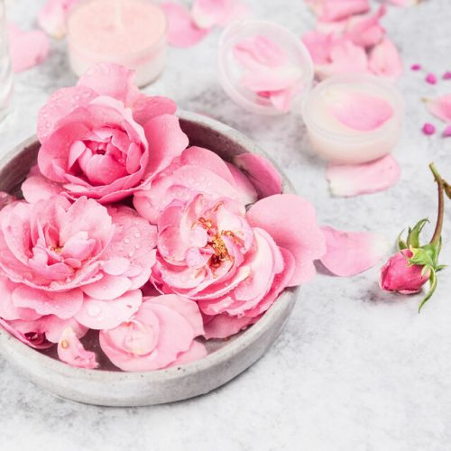 pink roses in gray ceramic bowl of water on gray marble table , cream in  jar and candle