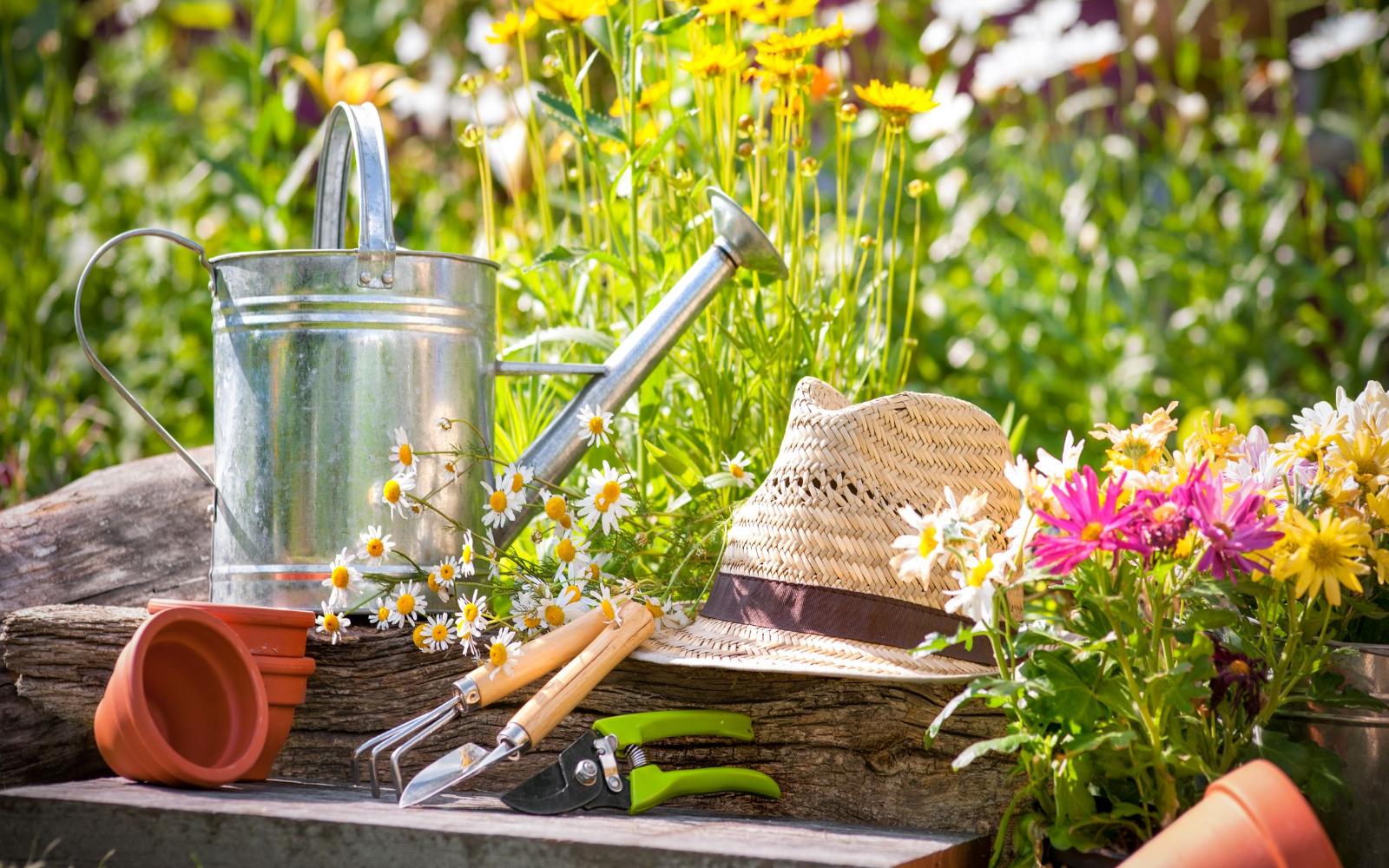 ¿Qué herramientas de jardinería necesitas para el cuidado de tu jardín?