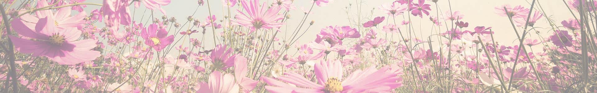 ¿Por qué regalar flores frescas frente a las artificiales?
