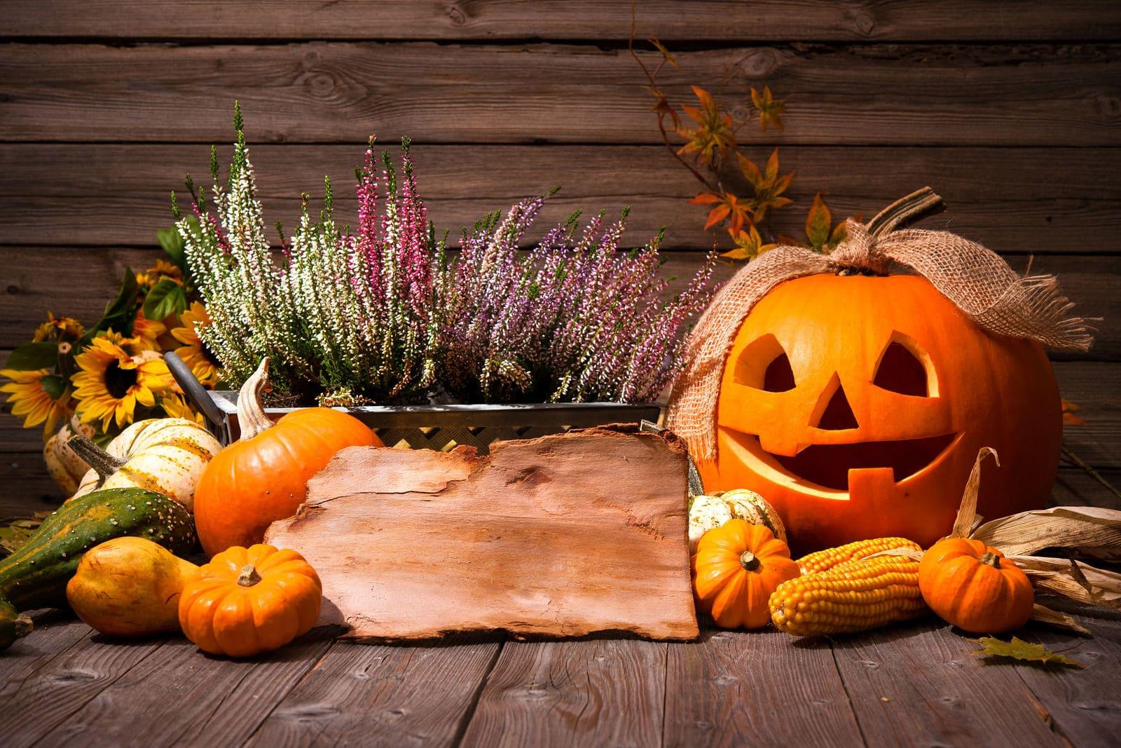 Ideas de decoración para Halloween con flores