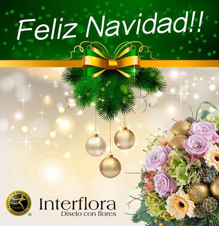 Feliz navidad flores interflora