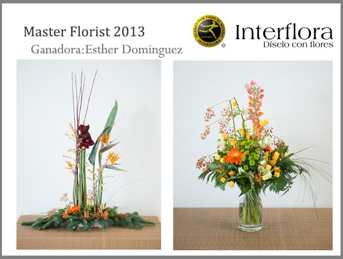 plantilla-master4