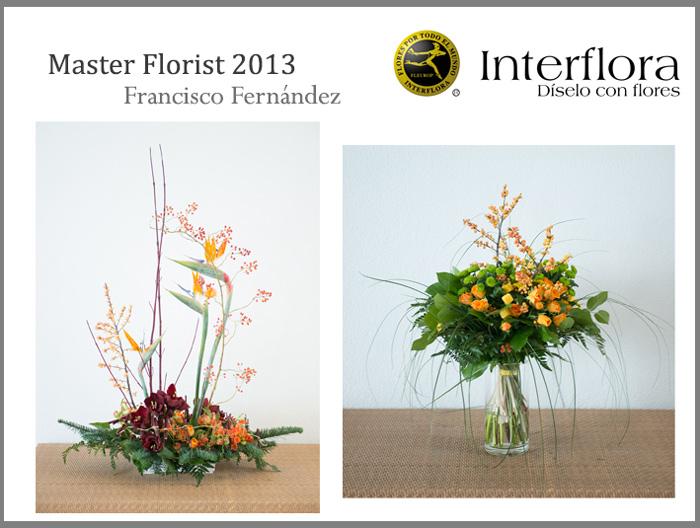 plantilla-master5