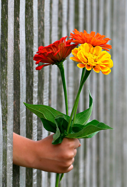 Hermosa Ramo De Uñas Polaco Ornamento - Ideas Para Esmaltes - aroson.com