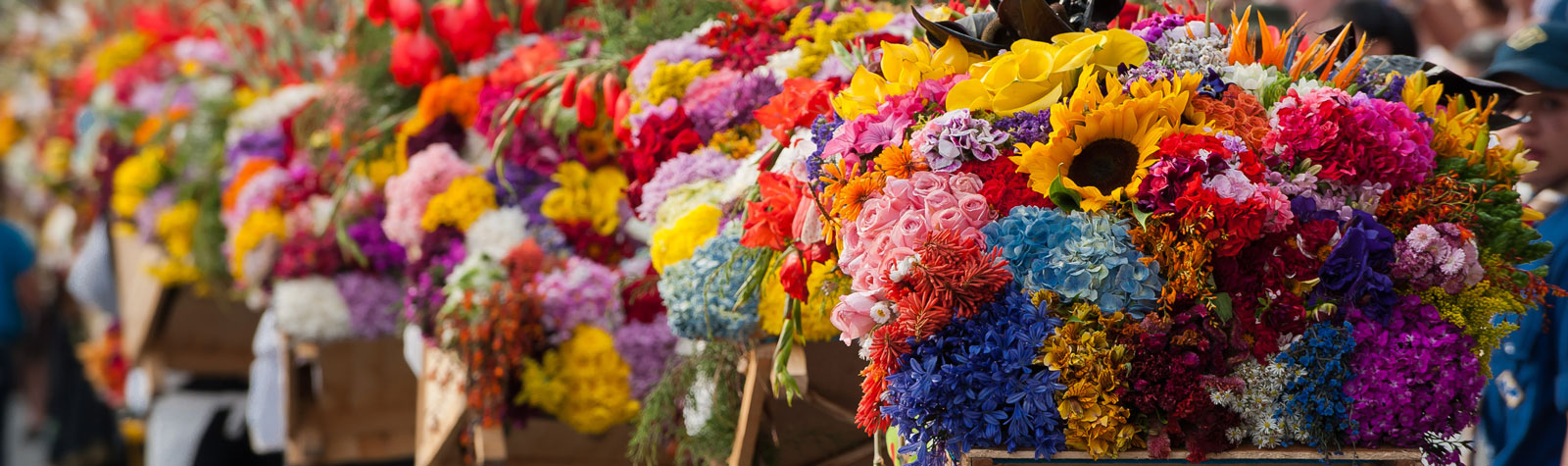 Fiestas florales alrededor del mundo